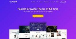 best-wordpress-theme-for-seo